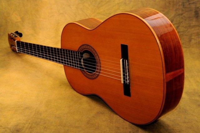 Mejores Guitarras Washburn